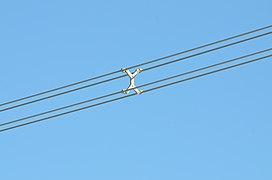Vibration of conductors